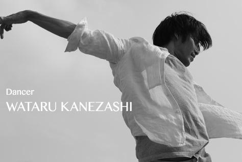 WATARU KANEZASHI