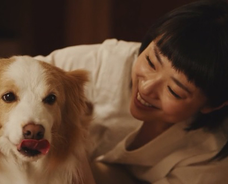 docdog岡明子